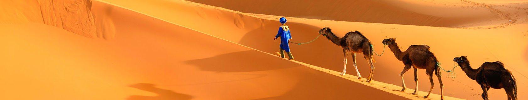merzouga-camel-trip-morocco